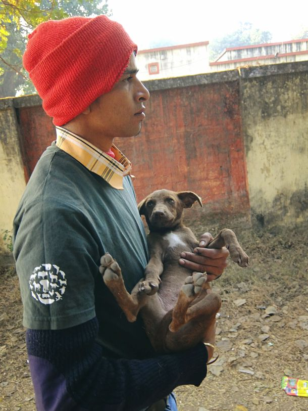 handler holding a stray dog