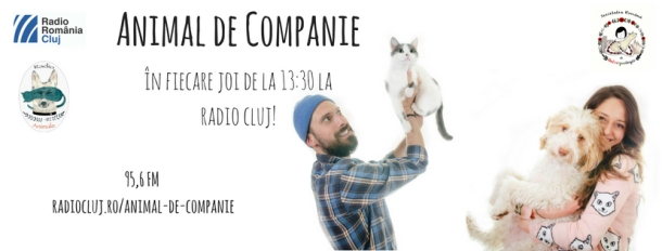 cover-radio-animale-fb