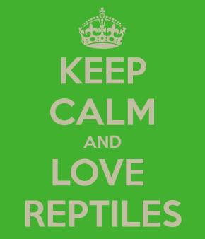 Cum ajutăm reptilele să fie mai active? – ediția a18-a